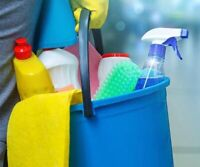 Cleaning lady with experience