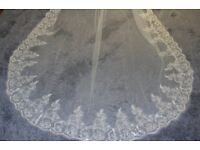 Chapel length (90 inches) delicate ivory wedding veil with sparkly lace edge