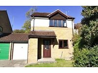 3 Bedroom Link Detached recently decorated in Peaceful location in Winchester