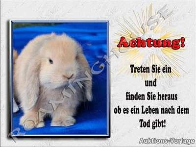 Hase  -Aluschild-Türschild -Neu-Kaninchen-Warnschild