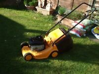 Lawns / Hedges / Small Trees Cut / Strimming LOW Prices 07751-594-534