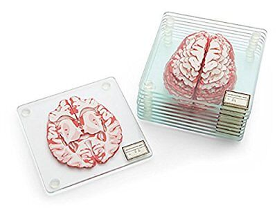 NEW Anatomic Brain Specimen Coasters Set of 10 pieces FREE SHIPPING