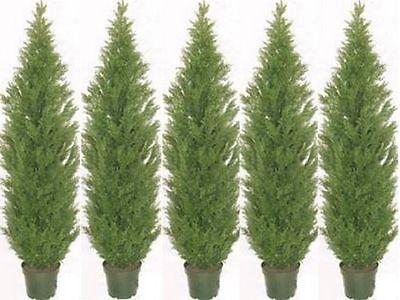 5 ARTIFICIAL CEDAR PINE OUTDOOR TOPIARY TREE 5
