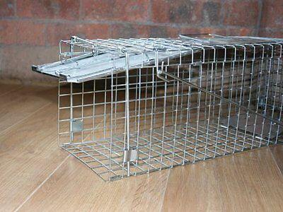 PestExpel Rabbits, Squirrels, Mink, Feral Cat, Vermin,Animal Folding Cage Trap