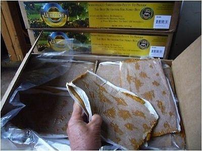 Ultra Bee Patties Pollen Substitute Honey Bee Food 18 Protein Beehive