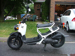 Looking for a Honda Ruckus scooter