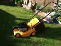 Lawns Hedges Cut From £10 South Birmingham