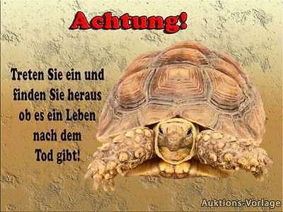 Schildkröte --Aluschild-Warnschild