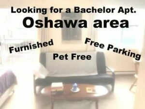 Bachelor apt wanted
