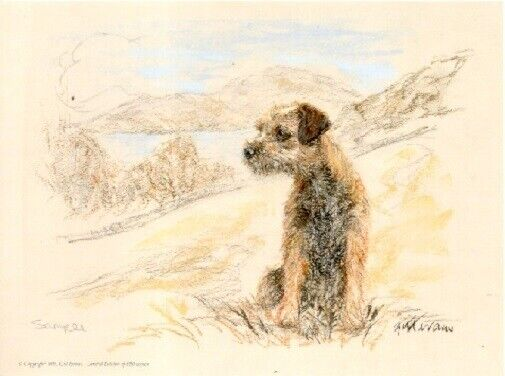 Border Terrier Limited Edition Art Print by UK Artist Gill Evans Coast Guard*
