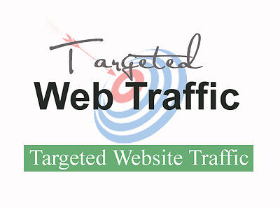 10 000 Keyword Targeted Google Organic Website Visitors Only  7 99