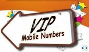 VIP PHONE NUMBERS FOR CELLPHONE VOIP FAX LANDLINE