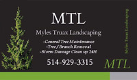 TREE SERVICES D'ARBRES BRANCHES FIRE WOOD TREE MAINTENANCE TREE