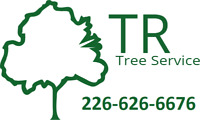Tree removal and pruning