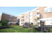 1 bedroom flat in Freehold Street, Shoreham By Sea, BN43 (1 bed)