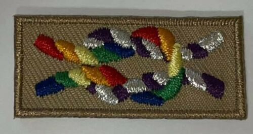Boy Scout Scouting for Equality Inclusive Scouting Spoof Square Knot