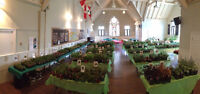 Garden Guild Plant Sale - An annual event at St. Jude's Church!