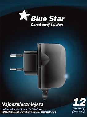 Travel charger SAM R210/D600/D900 NEW BLUE STAR