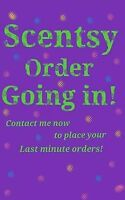 NEW SCENTSY REP LOOKING TO BUILD CLIENTELE!!