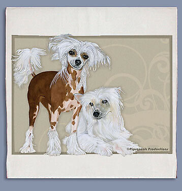 Chinese Crested Dish Towel