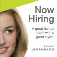 Need receptionist at busy Hair Salon