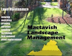 Grass Cutting Lawn and Yard Maintenance Landscaping Management