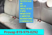 PROVAP-nettoyage à vapeur de tapis, siege-auto, divan