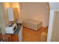 Cheap Double Semi-Studio flat in leafy Chiswick Available