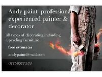 Local painter & decorator