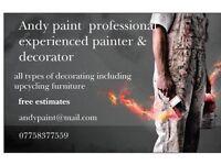 Andy paint painter & decorator