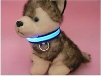 The dog collar dog collar LED light Medium Sized dog pet collar