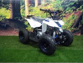 110CC THUNDER STARTER QUAD BIKE