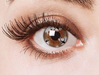 aricona Farblinsen weiße Kontaktlinsen für ein Geisterbraut Halloween Kostüm ()