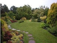 CJ's gardening & ponds