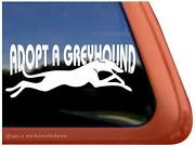 Greyhound Decal