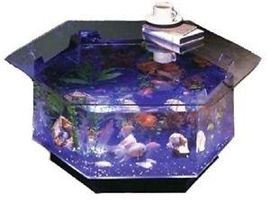 ... Midwest Tropical O-100 Aqua 40 Gallon Acrylic Aquarium Coffee Table
