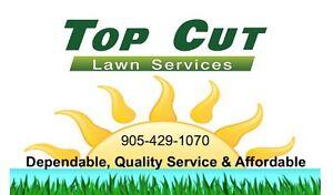 Lawn Cutting Servicew