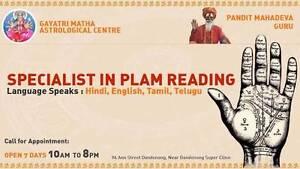 Psychic Reader Melbourne (Pandit Mahadev Ji) Dandenong Greater Dandenong Preview