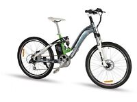 Longwise Ladies Electric Bike