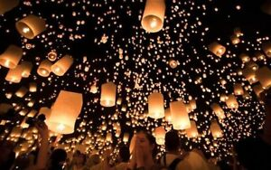 The Lights Festival, Toronto Lantern Festival  Sept 15  4 Ticket