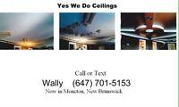 Custom ceilings