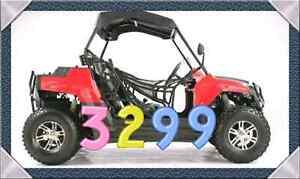 Side x Side 2 seat for kids/Adult off road Buggies