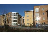 2 bedroom flat in St. Davids Hill, Exeter, EX4 (2 bed)