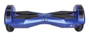 Blue Segway