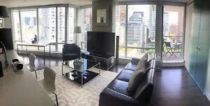 Need Roomate July 1st furnished apt yaletown