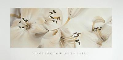 Huntington Witherill Lillies Poster Kunstdruck Bild 91,5x46cm