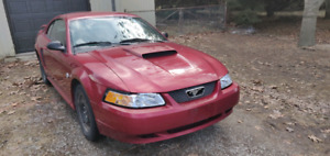 2004 Ford Mustang Part Out