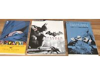 2 X DC COMICS BATMAN GRAPHIC NOVELS +ARKHAM CITY STRATEGY GUIDE BOOK