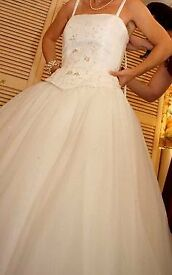 Beautiful 'Alfred Angelo' Princess style champagne wedding gown. Petite size 8,