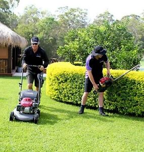 Lawn Mowing and Trimming Service Wentworthville Parramatta Area Preview